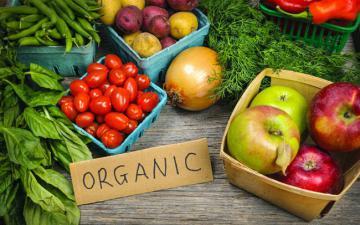 Nông nghiệp hữu cơ – Thực trạng và triển vọng