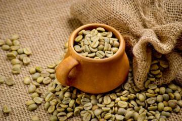 Tìm hiểu chung về cà phê
